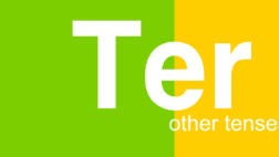 ter-other-tenses
